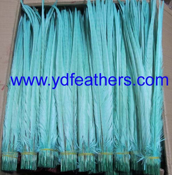 bleached and dyed light blue ringneck pheasant tail feathers