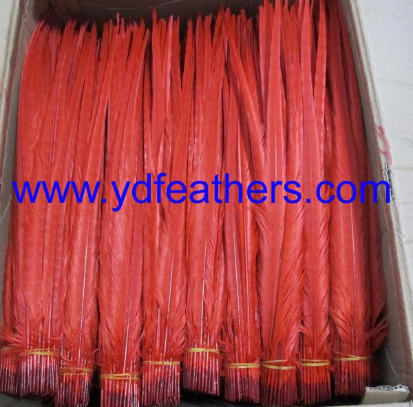 bleached and dyed red ringneck pheasant tail feathers