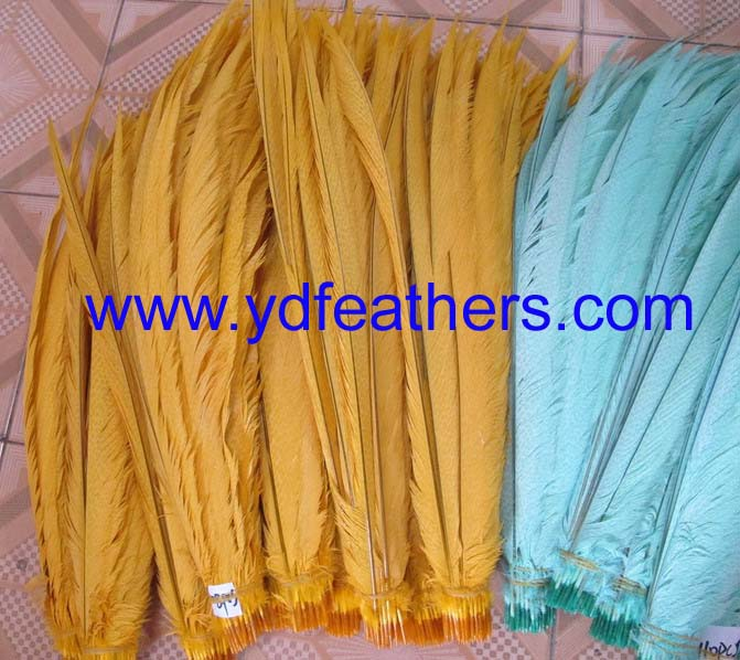 bleached and dyed colored golden center tail feathers