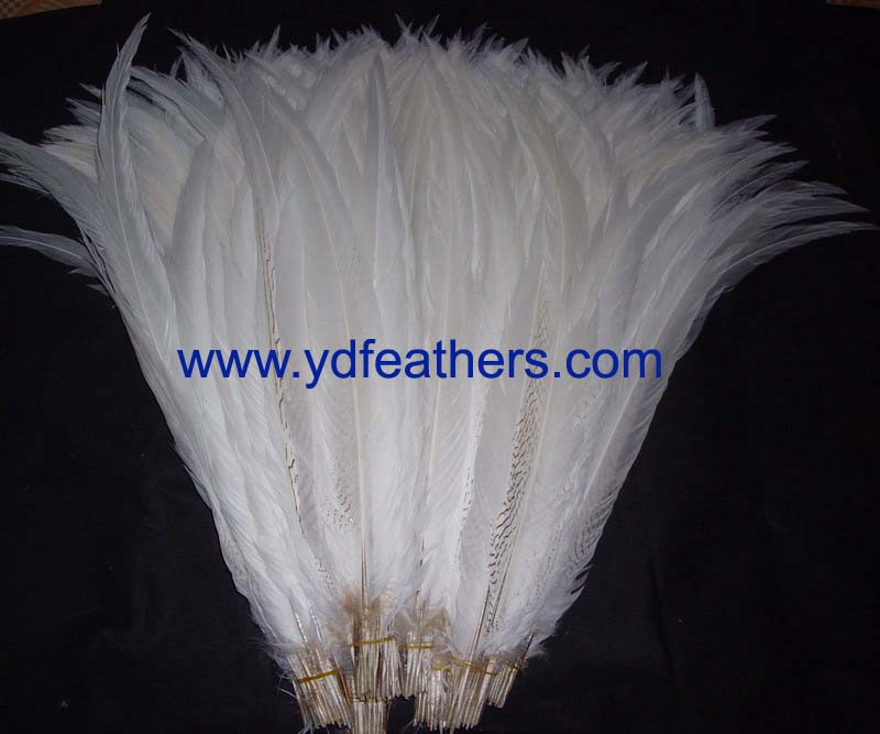 bleached silver/albino pheasant tail feather