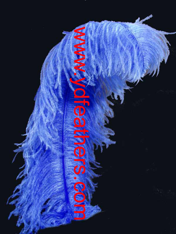 ostrich plume feather-02