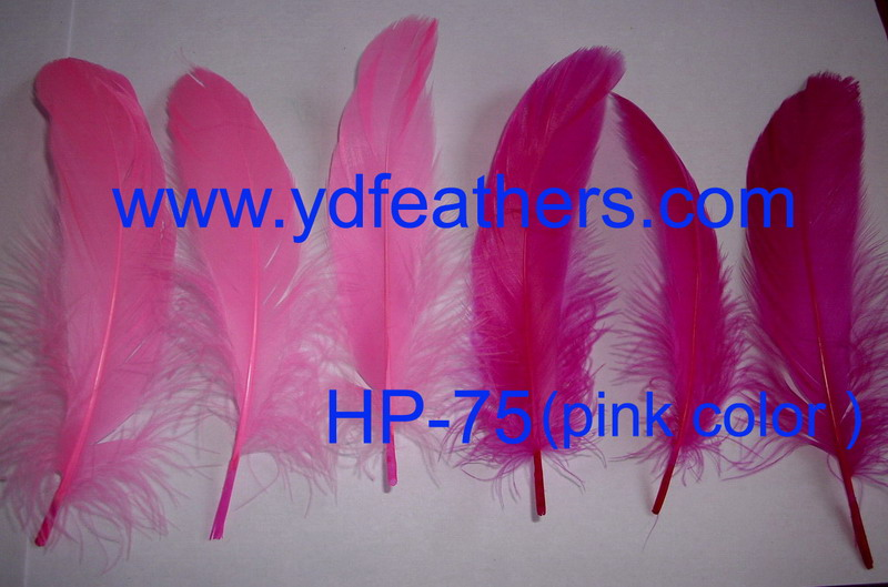 HP-75(pink color)