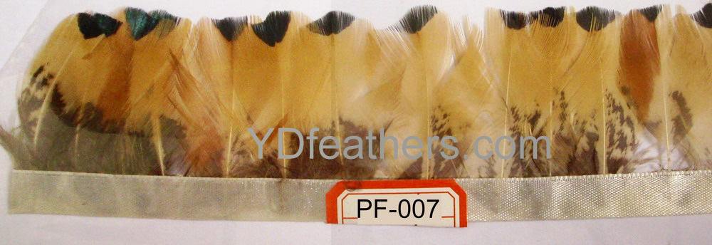 PF-007(Ringneck pheasant body feather fringe/trimming)
