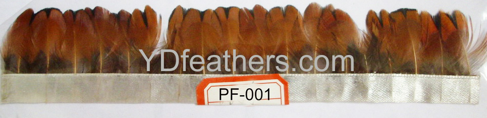 PF-001(Ringneck pheasant body feather)